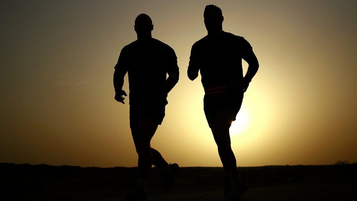 Indhent flere tilbud på træning; der er mange penge at spare